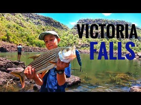 Fishing Batoka Gorge Victoria Falls Zambezi River