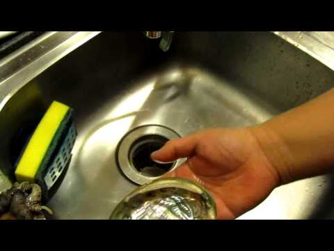 how to clean and wash abalone (and only takes a few steps).avi