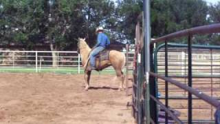 Kyle riding a horse that shouldn't have bucked this bad!!!