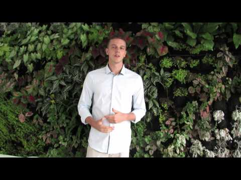 An Internship in Colombia - Politics and Government Testimonial. Daniel's Experience