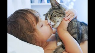 A Safe Haven for pets exposed to domestic violence