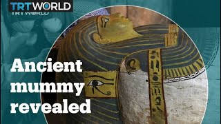 Egyptian Mummy With Woman Girl And Mummy Pinup Brother Vinni ´S Studio BVG43