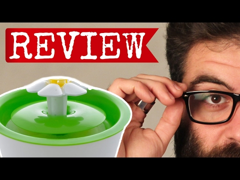 download Catit Flower Fountain Review: Should you buy this water fountain?