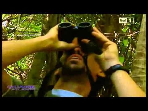 Brasile il giardino incantato Quark Atlante