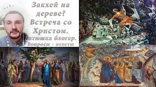 Закхей на дереве. о.Константин Мальцев  Воскресное Евангелие