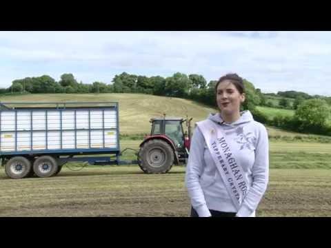 My Farming Week: Pamela Allen, Monaghan Rose