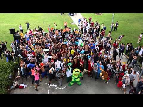 FIU Chant at the Student Harlem Shake Video (DM Building)