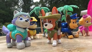 Nick Jr.'s Paw Patrol Pups have a Hamptons Pool Party with new pup Tracker