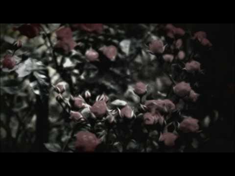 Shusha Guppy - Pacheh Leyli