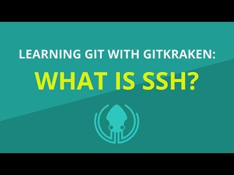 What is SSH? [Beginner Git Tutorial]