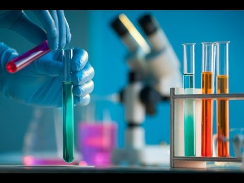 science processes and scientists in the essay aging genes Genetics essays / scientists genetic engineering future harmony or future harm the world of science has experienced gene therapy is the process of.