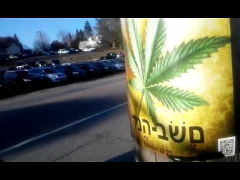 Maine Marijuana Summit December 5th - Crashing the party