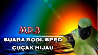 Mp3 Suara Rool Speed Cucak Hijau Untuk Pancingan Emosi