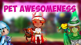 Pet Awesomeness: Can This Fire Pet Succeed?