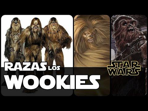 Star Wars Razas Wookies (Datos y Curiosidades)