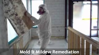 Golden Hands - Mold Remediation EHT NJ 609-404-9635