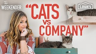 "The Weekender: ""Cats vs. Company"" (Season 3, Episode 4)"