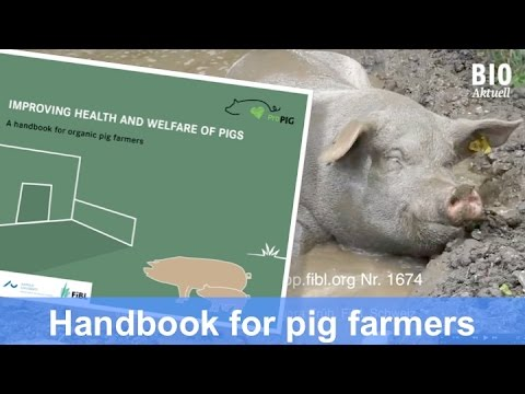 New handbook by ProPig (CORE Organic): Improving health and welfare of pigs (Aug 2015)