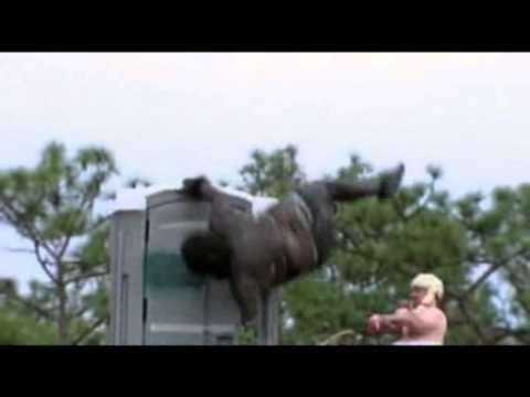 """king kong contra aeromodelismo crack humor  """"jackass 2.5"""" ( Nilo Video)"""