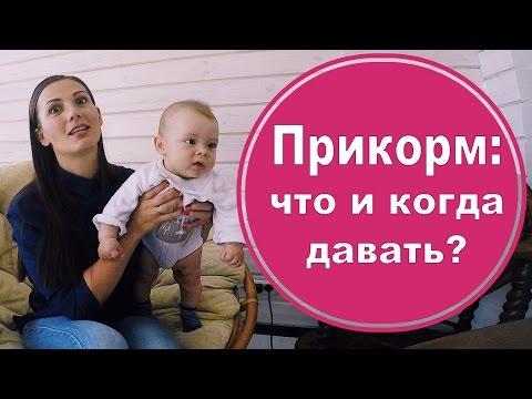 Как приготовить Прикорм когда начинать и чем кормить малыша. Мой опыт