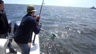 Риболовля на солоної @ Шов Ромер