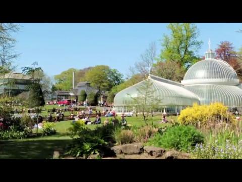 Glasgow Botanic Gardens May 2017