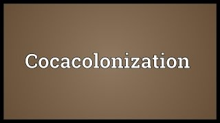Cocacolonization Meaning