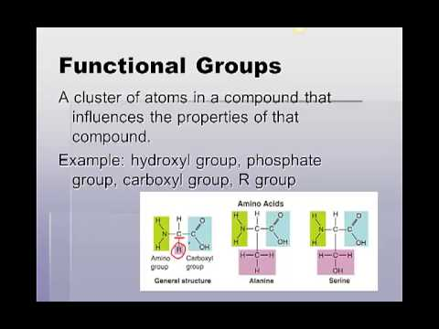 Old lipid notes
