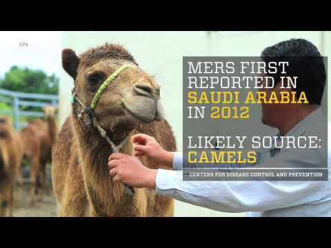 Here's what you need to know about MERS