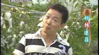 台灣農民力-第004集 甜 柿