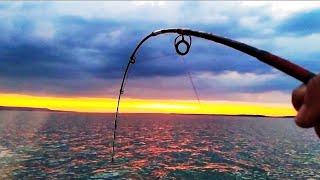 Снова ЛОМАЕТ СПИНИНГ ОН ВЗЯЛ Ловля СОМА на квок Рыбалка в Жару под 40