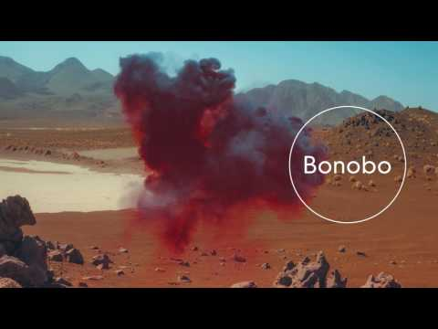 Bonobo : Samurai