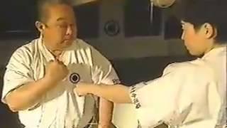 Repeat youtube video 3 Major Schools of Okinawa Karate - Uechi-ryu, Goju-ryu, Shorin-ryu Vol.2