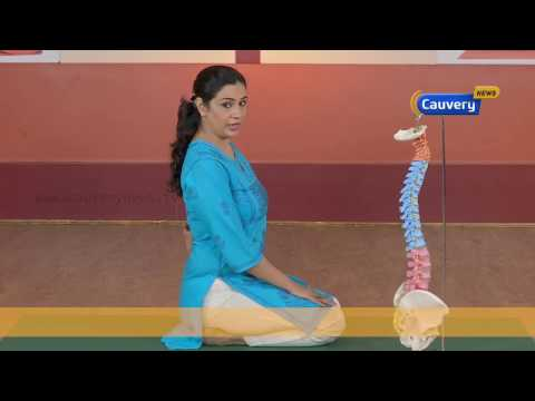 வஜ்ராசனம் : அமர்தலின் இன்னொரு முறை  | 2 Nimida Yoga