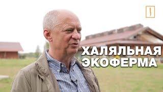 """Халяль и био встретились в Тульской области. Уникальная экоферма """"Горчичная поляна"""""""