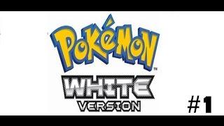 Pokemon White Việt Hóa #1: Ngày Đầu Vất Vả!