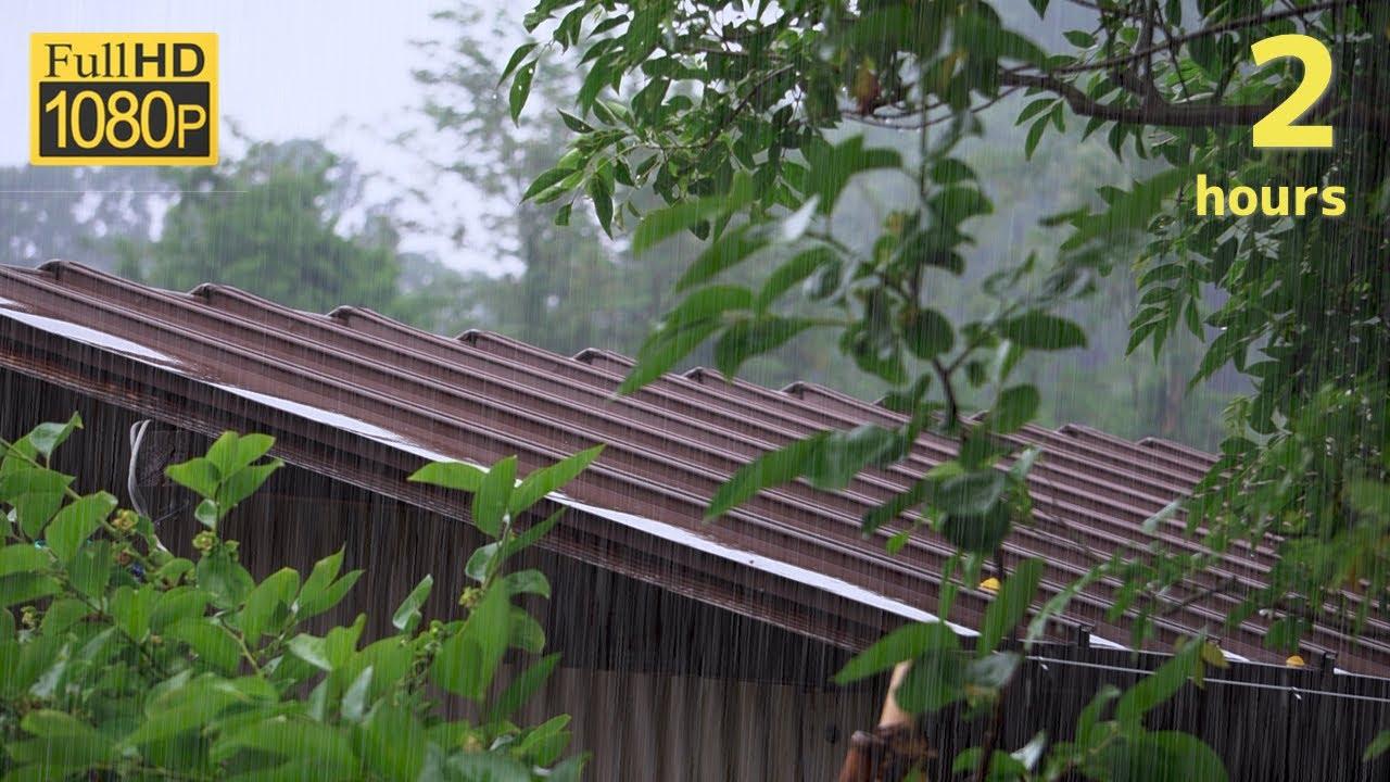 【雨音】雨の音と鳥の鳴き声でリラックスする2時間