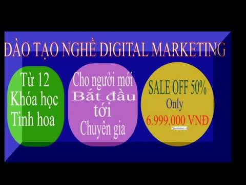Khóa học đào tạo nghề Digital Marketing thực thụ