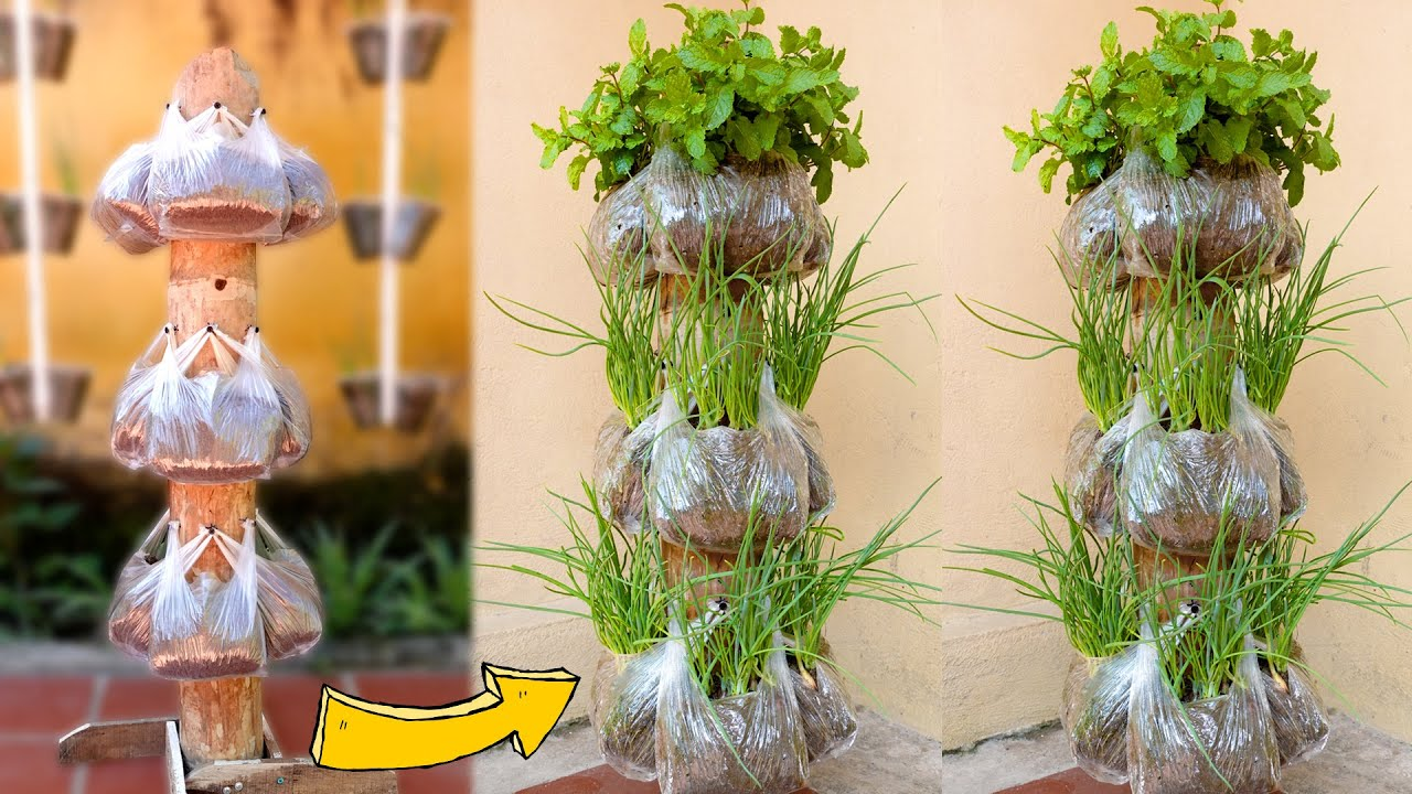 Growing Onions & Mint at Home, Best Idea for Small Spaces, Vertical Garden