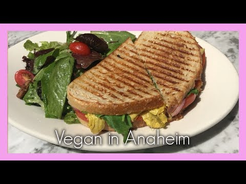 Vegan Travel Vlog #10 pt 2: Anaheim, California