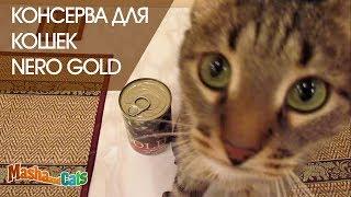 Консерва NERO GOLD хороший влажный корм для кошек | Обзор
