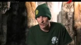 видео Охотники за пушниной