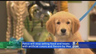 Petco To Stop Selling Dog, Cat Food With Artificial Ingredients
