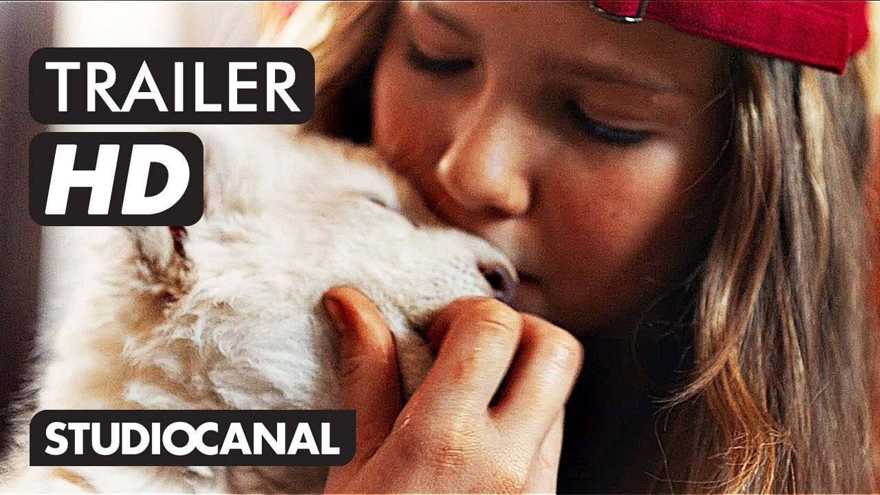 Mia Und Der Weiße Löwe Trailer Deutsch Ab 31 Januar 2019 Im Kino