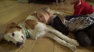 Николь играет с собакой в гостях !