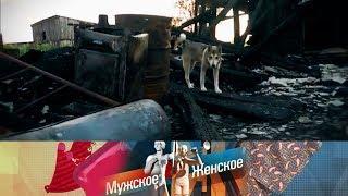 Мужское / Женское - Дело было вСанках. Выпуск от21.08.2017
