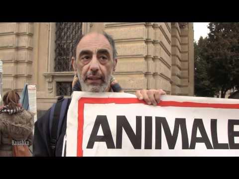 Manifestazione contro la violenza animali