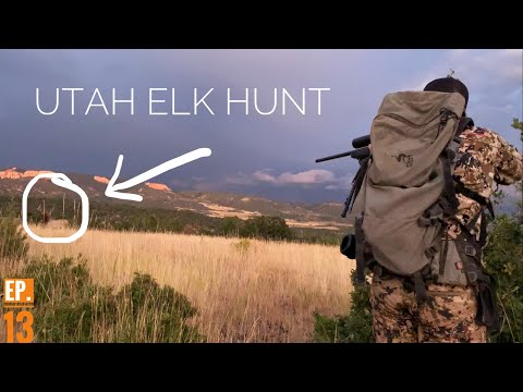 CALLED A 6PT BULL ELK TO 20 YARDS!! | Utah Elk Hunt Series EP.13