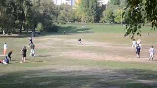 Бейсбол в парке Дружбы