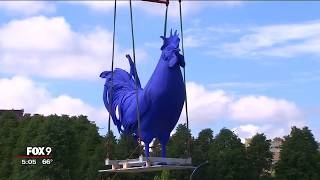 Big, blue rooster installed at Minneapolis Sculpture Garden